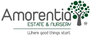 Amorentia estate and nursery logo