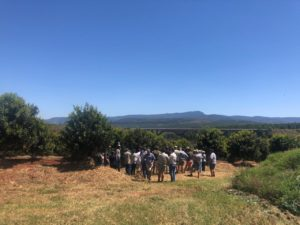 macadamia practical, farmers, practicals