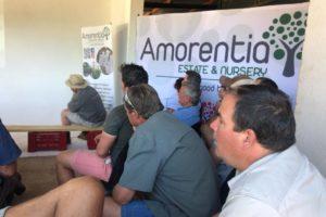 farmers, amorentia, practical