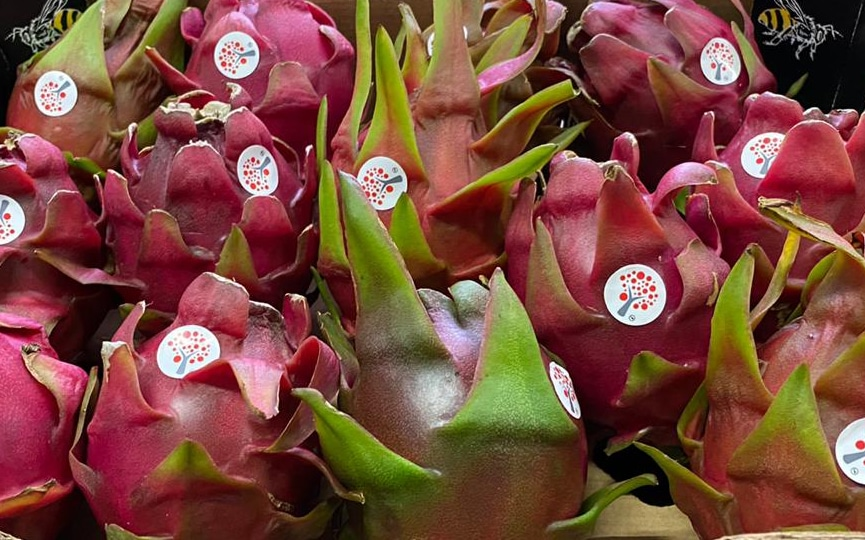 What are the Nutrition Facts of Dragon Fruit?