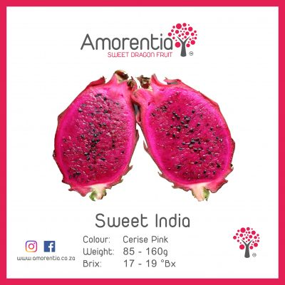 Sweet India with Info